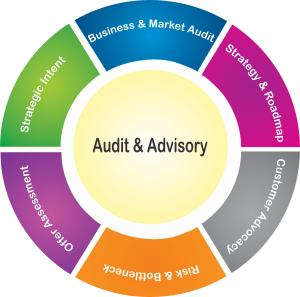 Audit & Advisory