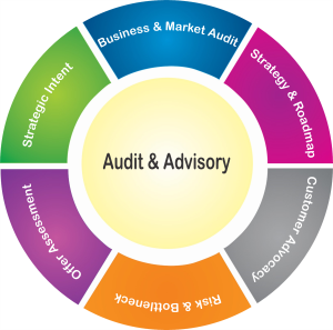 Audit & Advisory